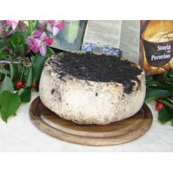 Pecorino Stagionato in vinacce di Merlot 3,5 kg
