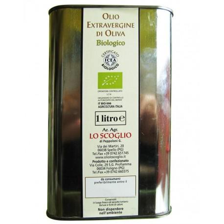 Extra Virgin Olive Oil  biological - 1 lt