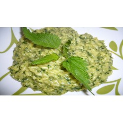 Risotto with Nettle